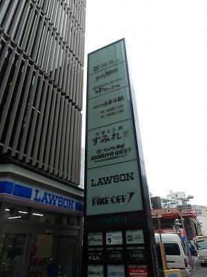 猫カフェモカ澁谷2