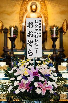 2016.7.24 動物慰霊祭大法要14