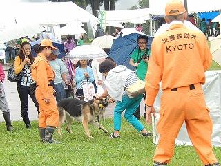 2016.919 福井県動物愛護フェスティバル16