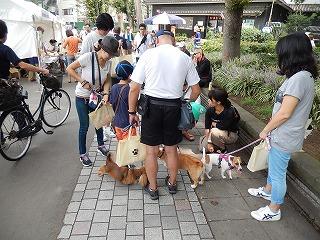 2016.9.17 中央行事動物愛護フェスティバル18-3