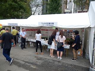 2016.9.17 中央行事動物愛護フェスティバル19