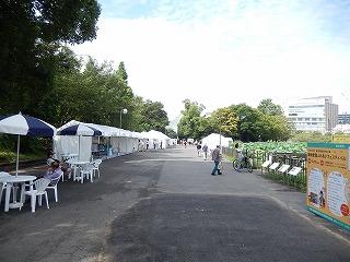 2016.9.17 中央行事動物愛護フェスティバル2
