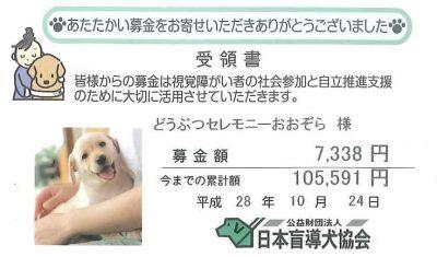 公益財団法人 日本盲導犬協会 募金 2016