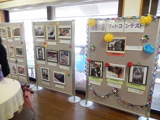 2016.919 福井県動物愛護フェスティバル23