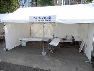2016.9.17 中央行事動物愛護フェスティバル4