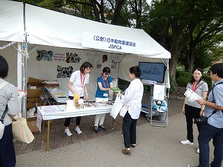 2016.9.17 中央行事動物愛護フェスティバル42