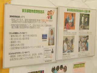 2016.9.17 中央行事動物愛護フェスティバル49