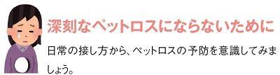 福井ケーブルテレビ・さかいケーブルテレビガイド2017年3月号 画像2