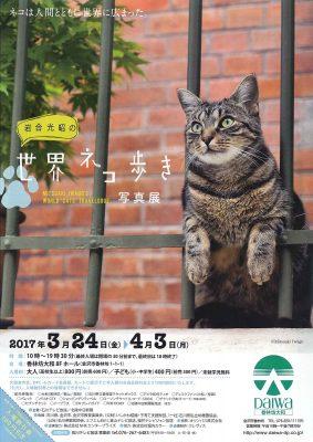 2017.3 世界ネコ歩き写真展