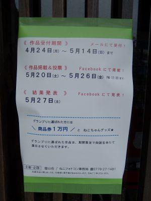 2017.5 御誕生寺さん ねこフォトコンテスト2