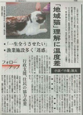 2017.7.8 福井新聞 小浜市川崎 地域猫