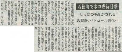 2017.7.7 若狭町猫虐待