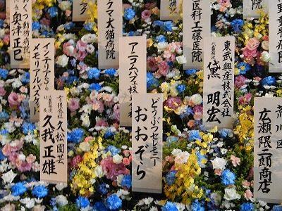 2017.7.23 動物慰霊祭大法要25