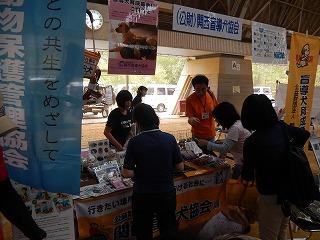 2017.9.18 滋賀県どうぶつフェスティバル23