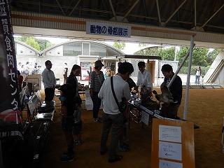 2017.9.18 滋賀県どうぶつフェスティバル31
