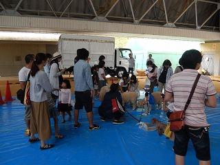 2017.9.18 滋賀県どうぶつフェスティバル28