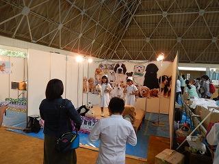 2017.9.18 滋賀県どうぶつフェスティバル19