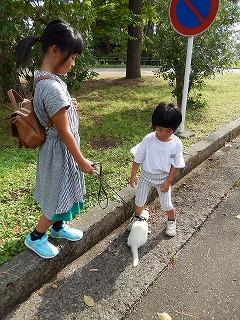 2017.9.23 石川県動物愛護フェスティバル49