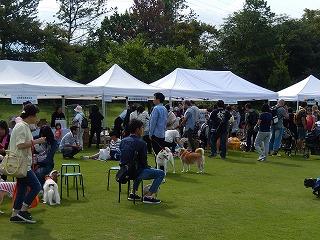 2017.9.23 石川県動物愛護フェスティバル6