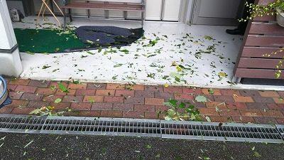 2017.10.23 台風後2
