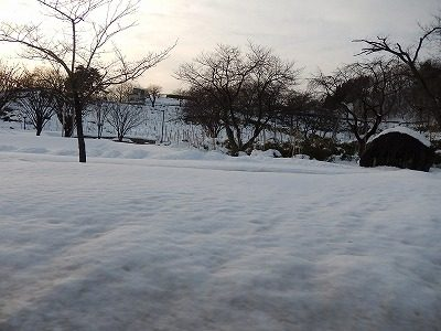 2018.2.14大雪20