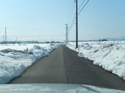 2018.2.26 大雪の後68