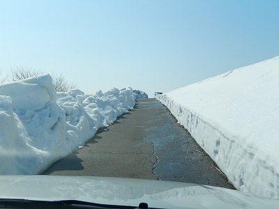 2018.2.26 大雪の後70