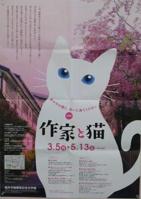2018.3 福井市橘曙覧記念文学館 作家と猫4