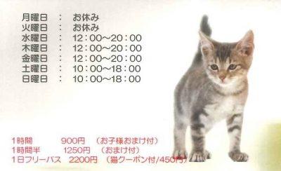 猫カフェ cat village キャットヴィレッジ 名刺型チラシ 裏