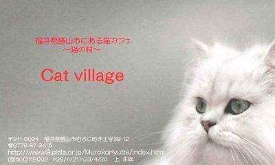 猫カフェ cat village キャットヴィレッジ 名刺型チラシ2