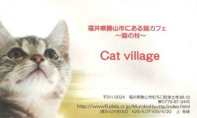 猫カフェ cat village キャットヴィレッジ 名刺型チラシ