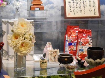 2018.5.14道端アビちゃん個別供養3