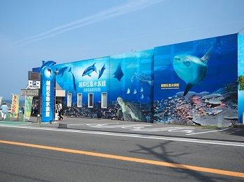 松島水族館チラシ写真