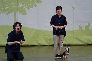 2018.9.22 中央行事 動物愛護ふれあいフェスティバル20