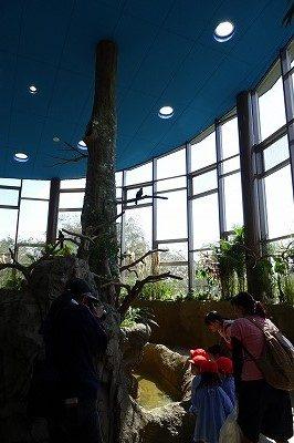2018 ハピジャン足羽山公園遊園地26
