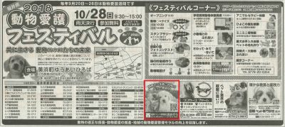 2018.10 福井新聞フェスティバル掲載