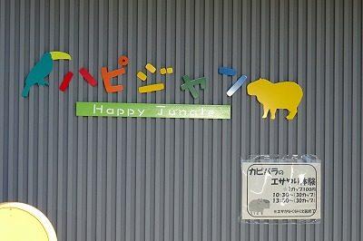 2018 ハピジャン足羽山公園遊園地4