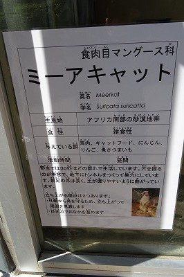 2018 ハピジャン足羽山公園遊園地34