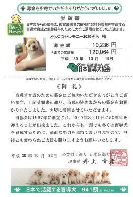 公益財団法人 日本盲導犬協会 募金 2018