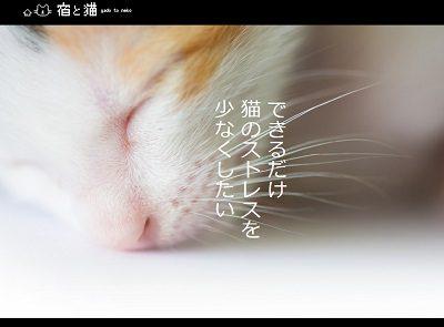 宿と猫 ホームページ