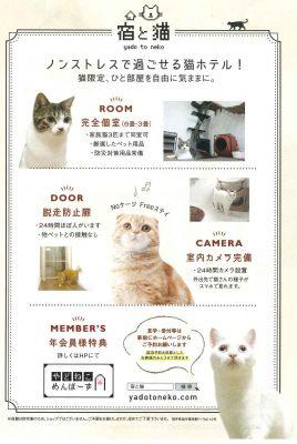 宿と猫 チラシ